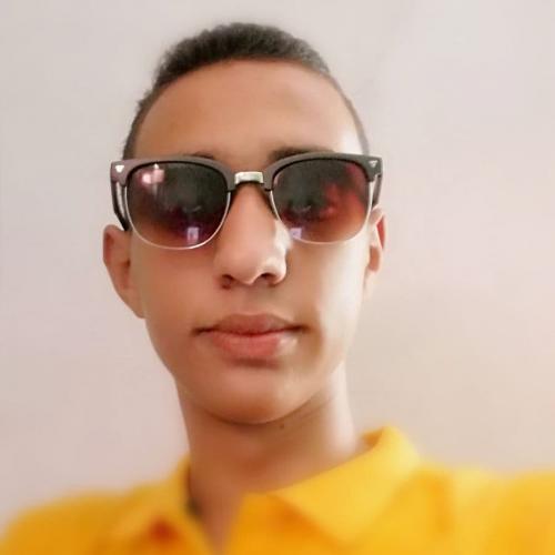 mohmed-elwardany