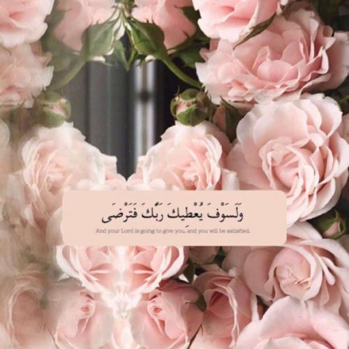 شيرين عبد الرحمن عفانة